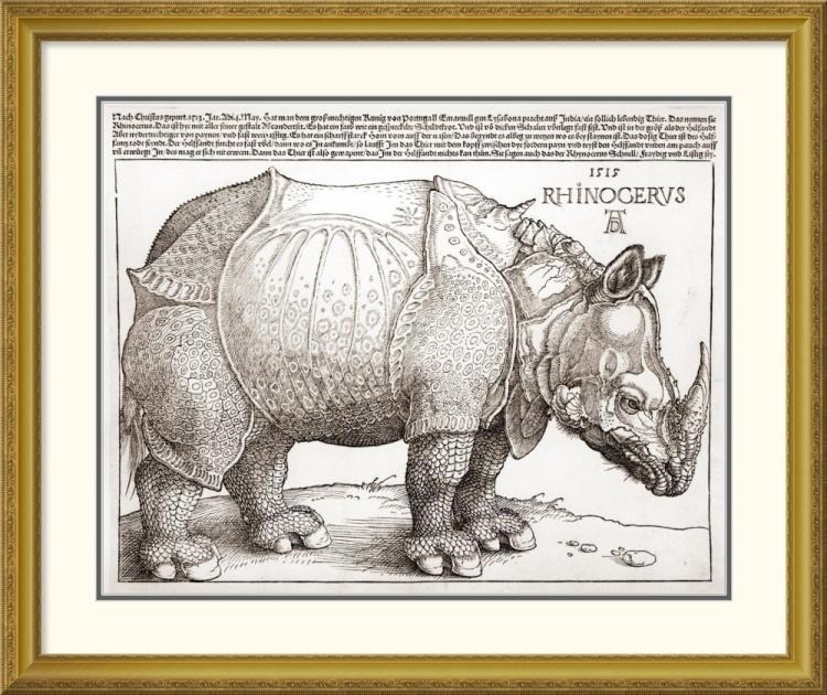 Albrecht Durer - The Rhinoceros