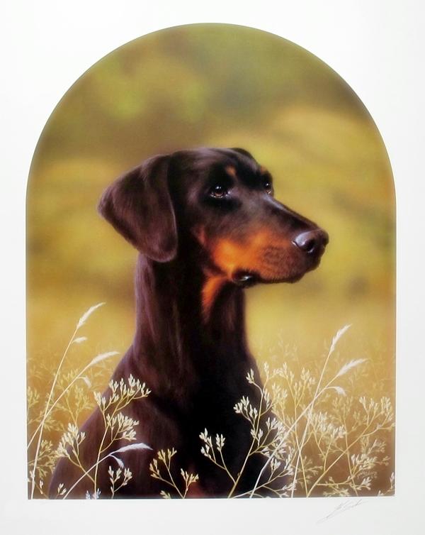 John Silver Doberman Dog