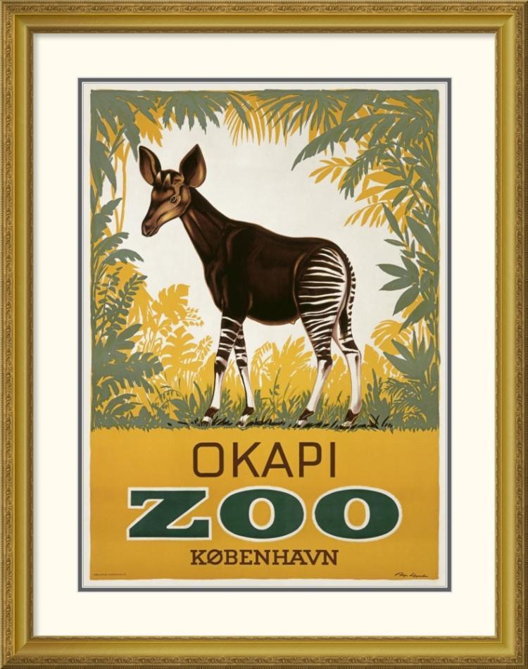 Aage Lippert - Kvbenhavn Zoo/Okapi