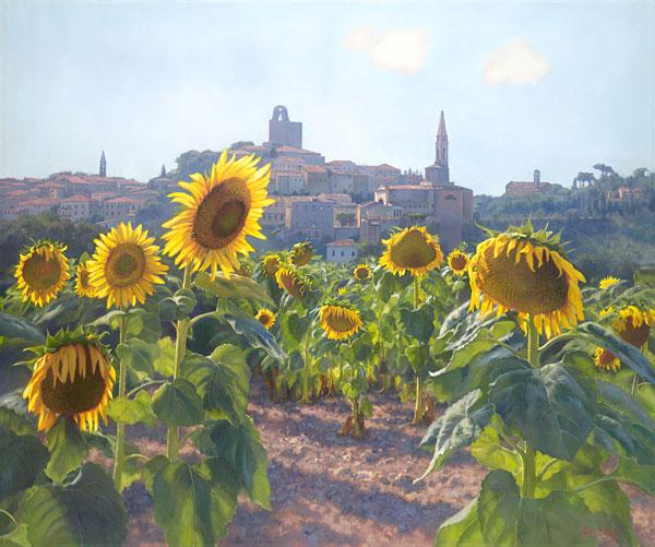 June Carey Sunflowers Of Castiglion Fiorentino