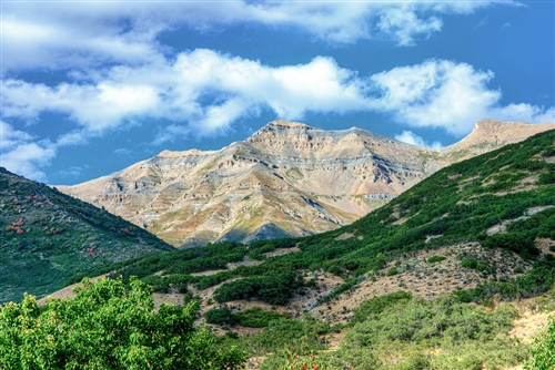 Looking Out The Front Door Orem Ut By Scott Barlow