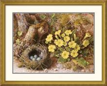 William B. Hough - Still Life With a Bird's Nest