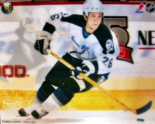 Tampa Bay Lightning Martin St. Louis    Meisner Art Nhl Hockey