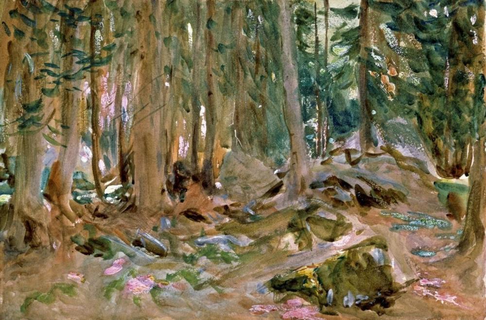 JOHN SINGER SARGENT PINE FOREST