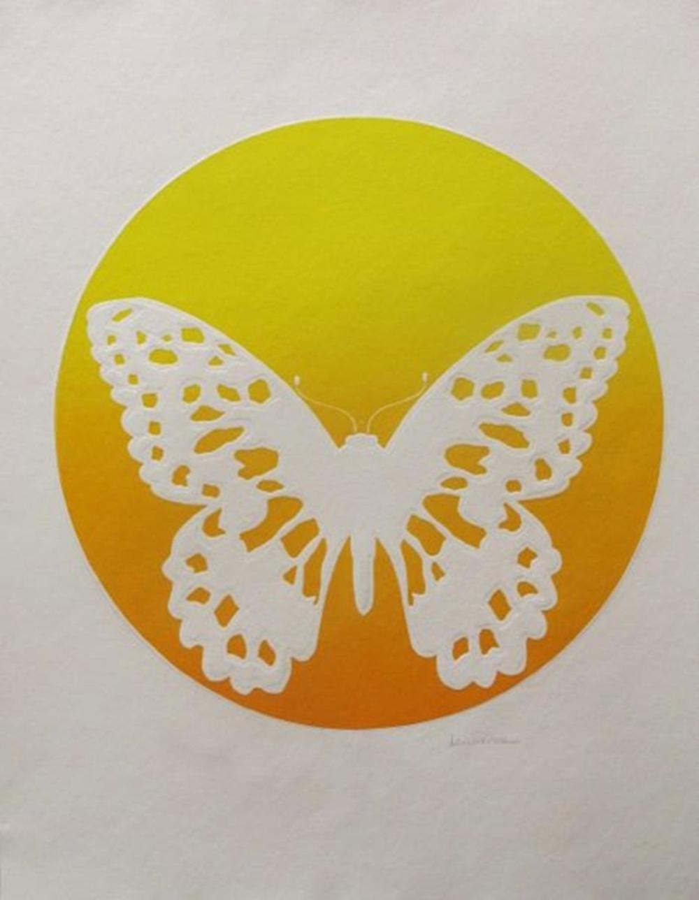 Lawrence  Morpha Butterfly