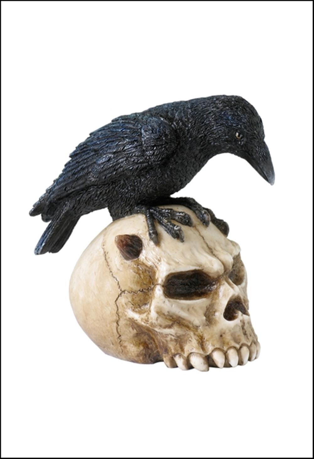 CROW ON DEVIL SKULL