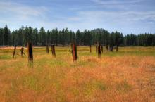 Tahoe Fence. A Gallery Wrapped Canvas By Kelly Wade