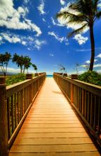 Maui Boardwalk Canvas By Kelly Wade