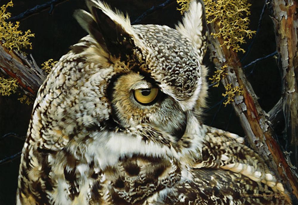 Carl Brenders…Eye Of The Beholder-great Horned Owl