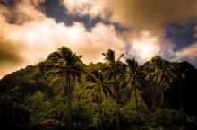 Ko'olau Mountains Hawaiian Islands. A Gallery Wrapped Canvas By Kelly Wade