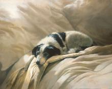 Bonnie Marris - Clean Linen