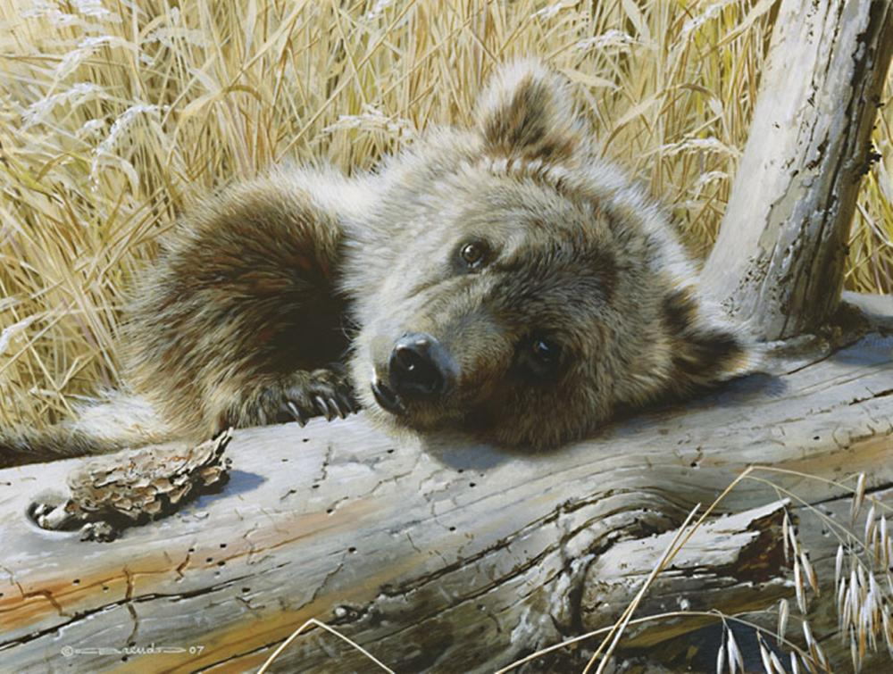 Carl Brenders…Time Out - Grizzly Cub