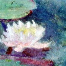 Claude Monet (After) Le Ninfee Rosa (detail I)