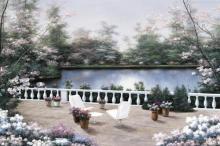 Diane Romanello - Terrace View