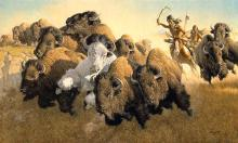 Frank C. Mccarthy   In Pursuit Of The White Buffalo