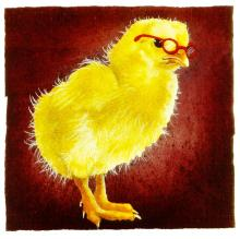 Will Bullas - A Chick With Brains...