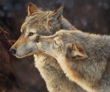 Bonnie Marris - Wolf Kiss