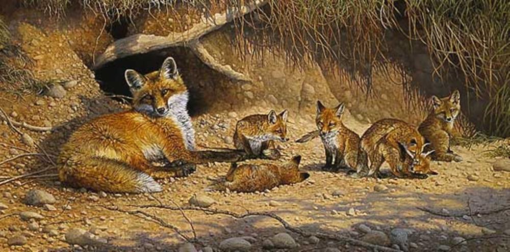 рисунок лисы с лисятами в норе всего лишь один
