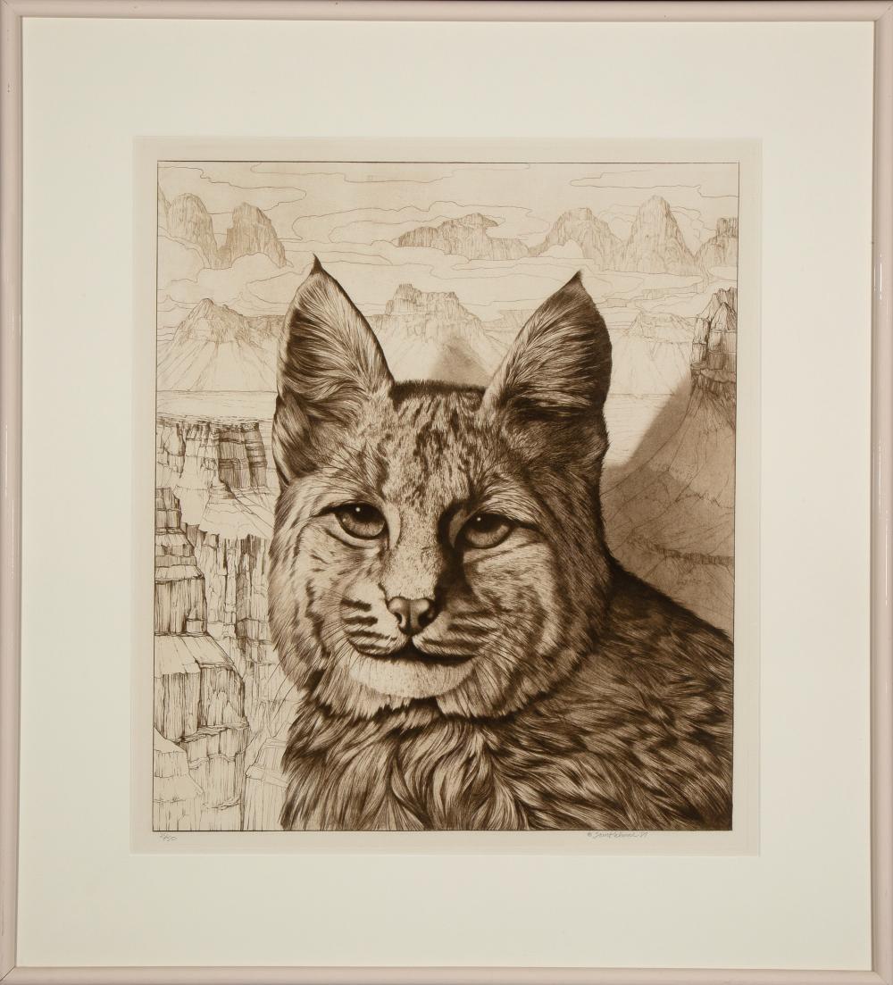 Tom Palmore, Bobcat, 1981
