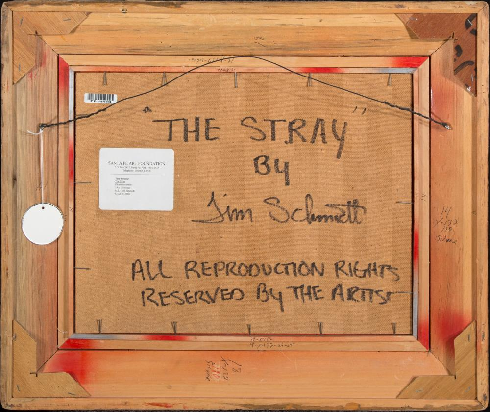 Tim Schmidt, The Stray