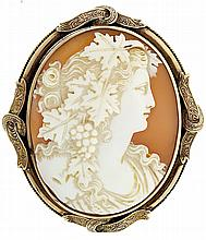 Cameo pin, carved shell portrait of a young woman in profile, 10 - 12k gold oval frame with applied ornament,  2