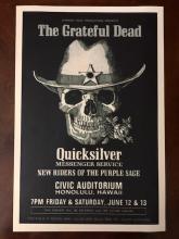 The GRATEFUL DEAD Live in Honolulu Hawaii Concert Poster