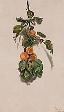CONRAD WISE CHAPMAN, American (1842-1910), Peaches on a Branch, oil on paper on canvas, initialled, dated