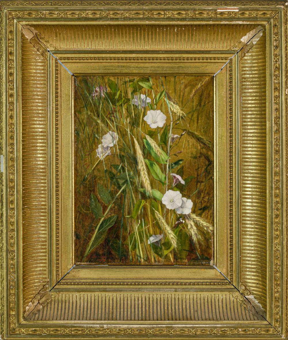 "FIDELIA BRIDGES, American (1834-1923), Morning Glories, oil on canvas, signed lower left ""F. Bridges"", 8 3/4 x 6 1/2 inches"