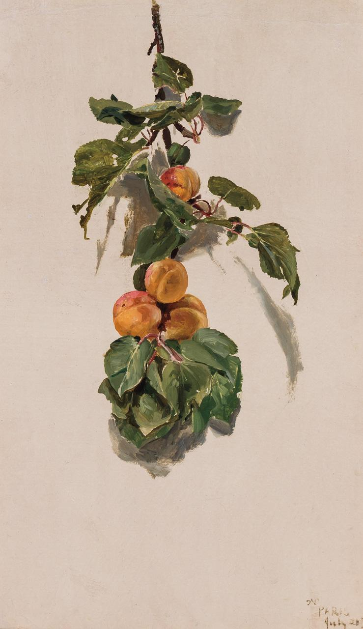 CONRAD WISE CHAPMAN, American (1842-1910), Peaches on a Branch, oil on paper on canvas, initialed, dated