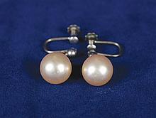 Pair pearl earrings