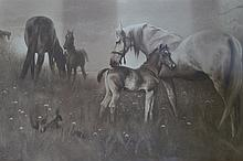VICTORIAN PRINT OF HORSES IN A FIELD