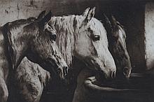 ALFRED JACOBSEN & V. WINKEL & MAGNUSSEN