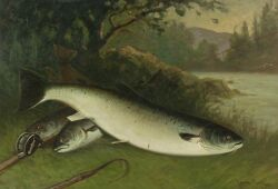 C. Myron Clark (American, 1858-1923) The Day's Catch/A Still Life with Trout and Rod Signed and dated