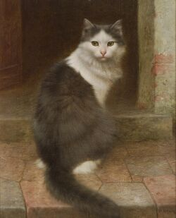 Wilhelm Schwar (German, 1860-1943), On the Stoop, Gray and White Cat, Signed