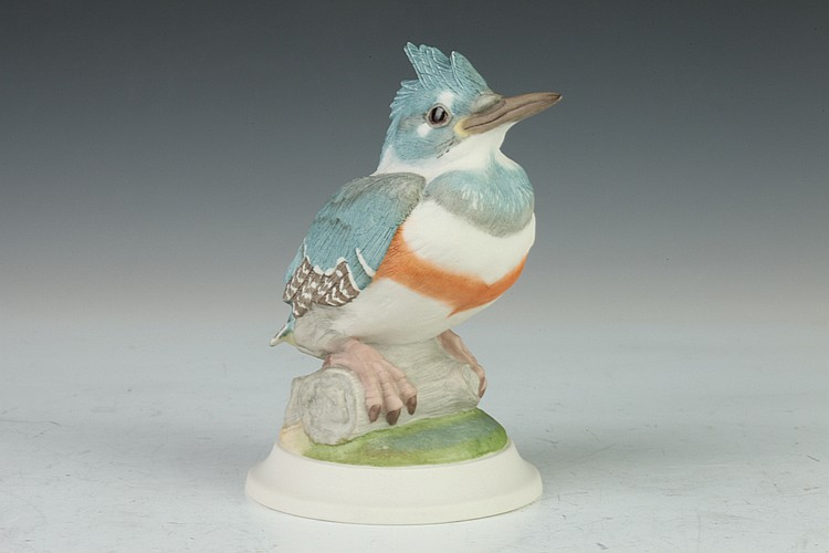 BOEHM PORCELAIN FIGURE FLEDGLING KINGFISHER. 449R. - 6 in. high.