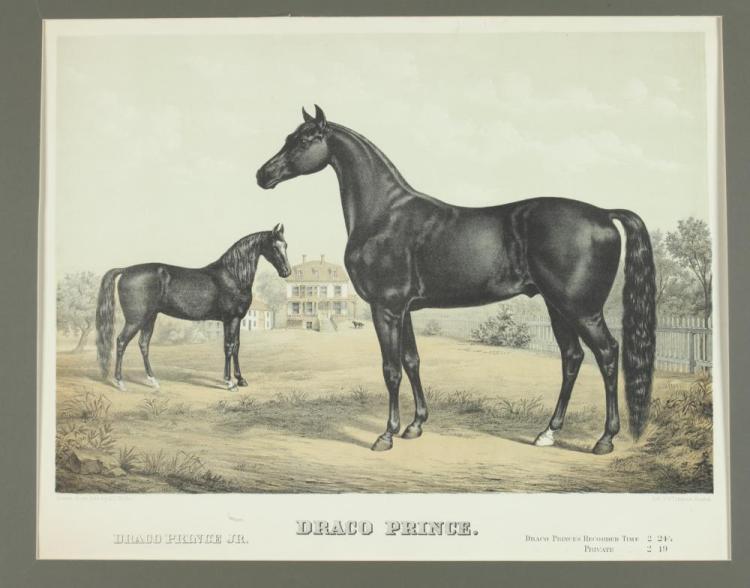 19TH CENTURY SPORTING LITHOGRAPH, DRACO PRINCE, AFTER EDWARD KNOBEL, Edward Knobel (American, 1839-1908), Published J.G. Thomson, Bosto