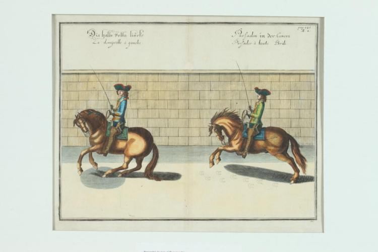 COLLECTION OF THREE 17TH CENTURY ABRAHAM VAN DIEPENBEKE HANDCOLORED DRESSAGE ENGRAVINGS . Published Antwerp, William Cavenish, the firs