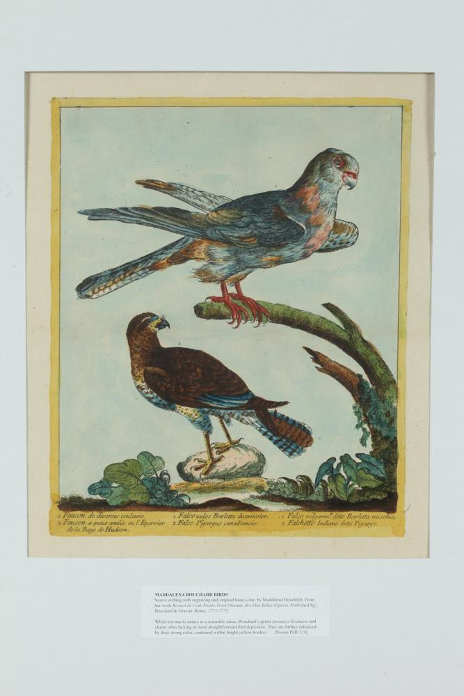 PAIR OF TWO 18TH CENTURY MADDALENA BOUCHARD HANDCOLORED ETCHINGS OF BIRDS OF PREY, Published Rome, Bouchard & Gravier, 1771-1775.
