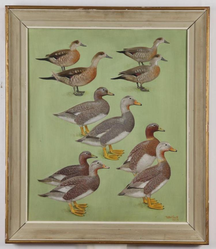 PETER MARKHAM SCOTT (British, 1901-1989). DUCKS, signed and dated 1953 lower right. Oil on canvas.