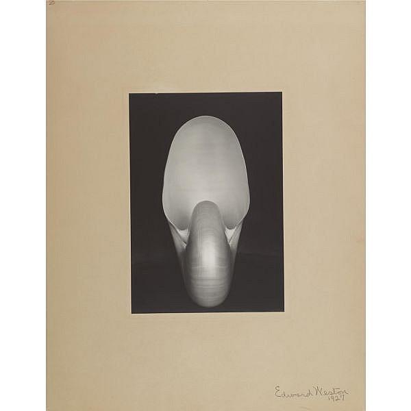 Edward Weston 1886-1958 , nautilus