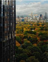 ROBERT POLIDORI | View of Central Park toward the East, NY, NY