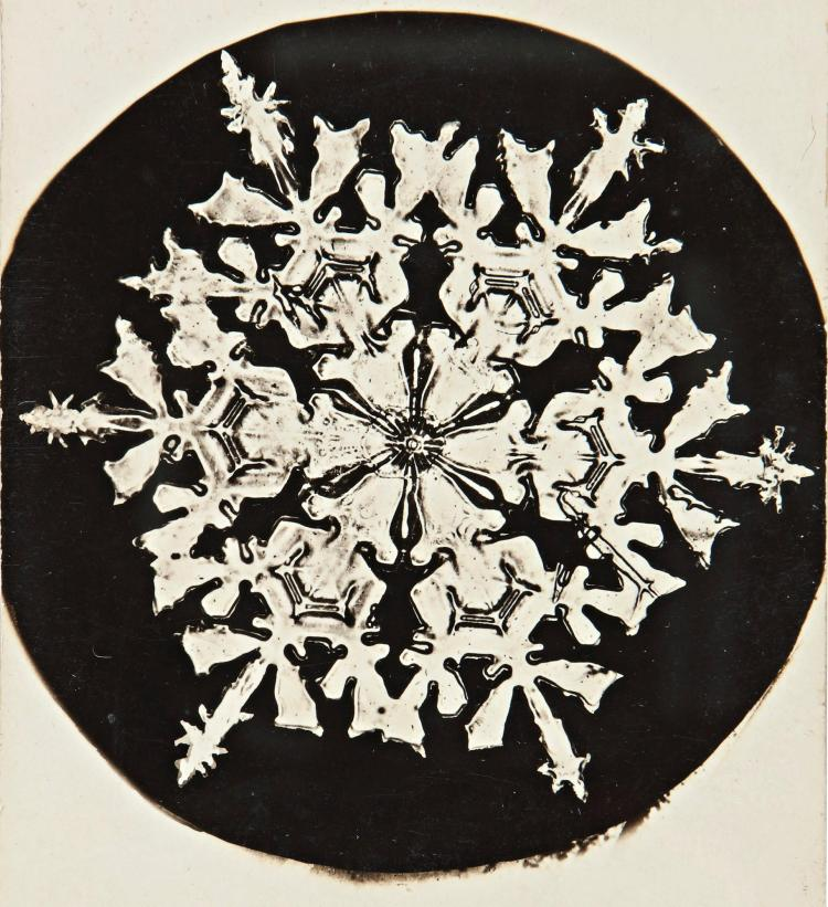WILSON A. BENTLEY | Selected images of Snowflakes