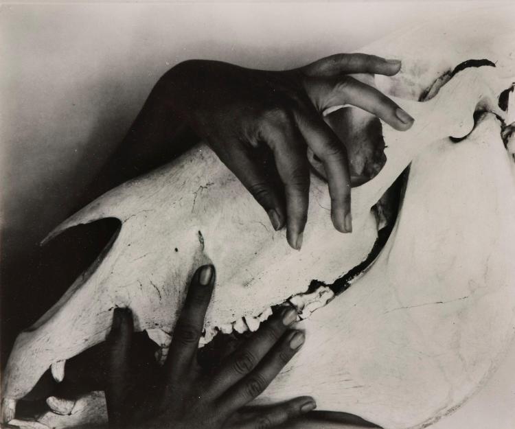 ALFRED STIEGLITZ | Georgia O'Keeffe - Hands And Horse Skull