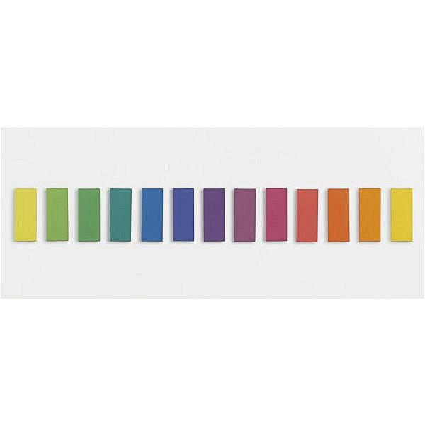 l - Ellsworth Kelly , b. 1923 Spectrum VI oil on canvas in thirteen parts