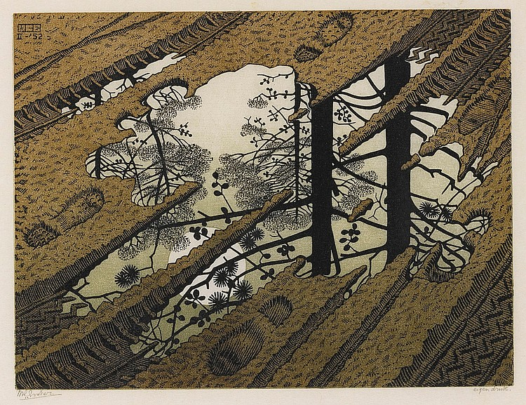 M. C. ESCHER | Puddle (Bool/Kist/Locher/Wierda 378)