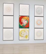 DAMIEN HIRST | In a Spin, the Action of the World on Things Vol. II