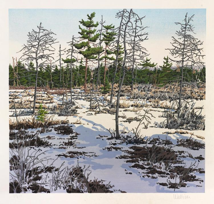 NEIL WELLIVER | Little Marsh