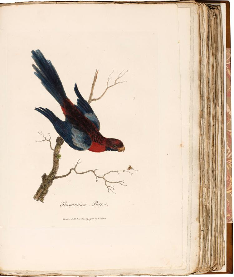 WHITE. JOURNAL NEW SOUTH WALES. 1790