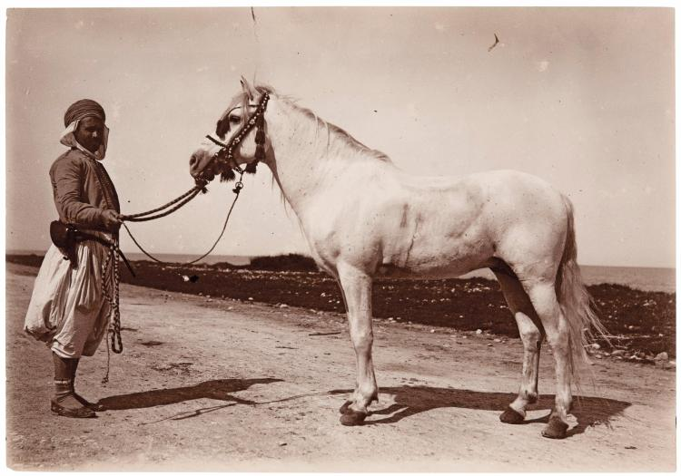 ALBUM AND BOX OF PHOTOGRAPHS OF ARABIAN HORSES