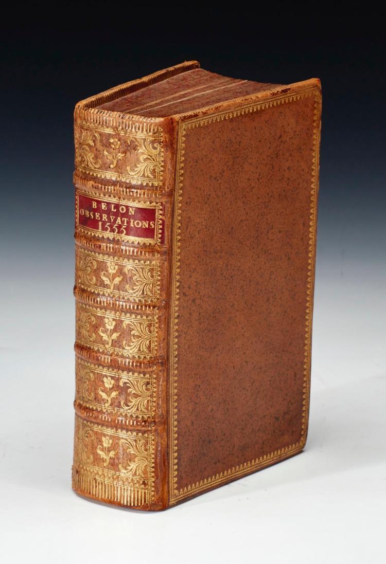BELON. LES OBSERVATIONS. 1555